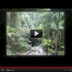 Video Marketing on Squidoo
